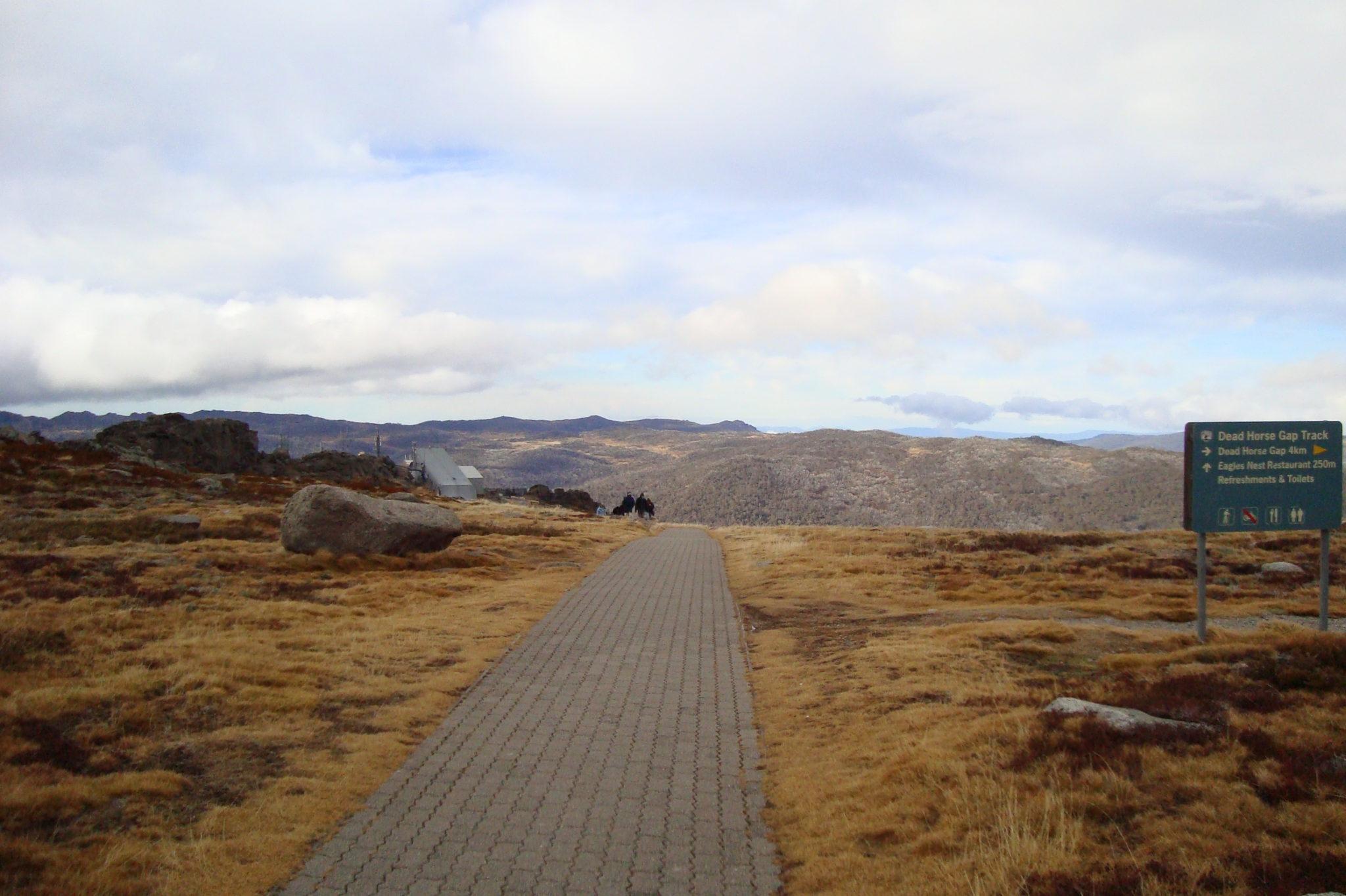 The road to no where, Mt Koszc., Australia