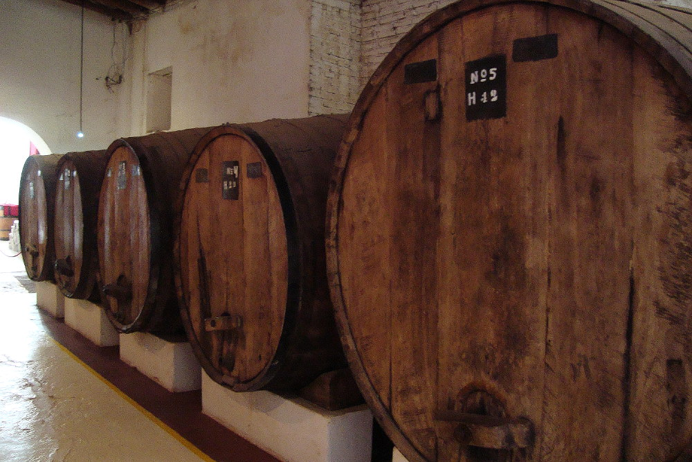 yum-argentinian-wine